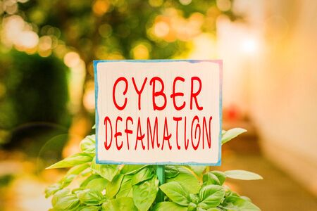 Writing note showing Cyber Defamation. Business concept for slander conducted via digital media usually by Internet Plain paper attached to stick and placed in the grassy land Stok Fotoğraf