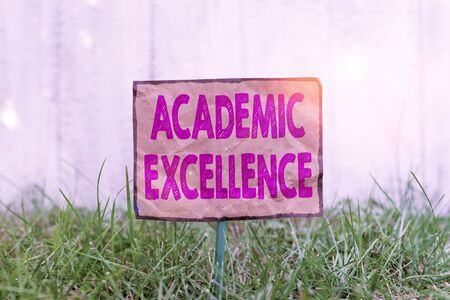 Handwriting text writing Academic Excellence. Conceptual photo Achieving high grades and superior perforanalysisce Crumpled paper attached to a stick and placed in the green grassy land