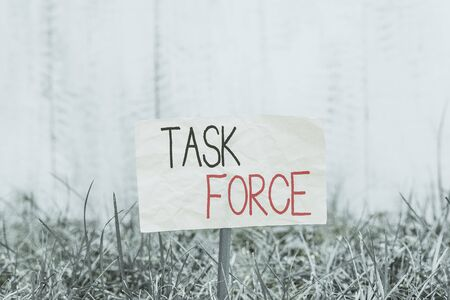 Handwriting text writing Task Force. Conceptual photo a group of showing who are brought together to do a particular job Plain empty paper attached to a stick and placed in the green grassy land