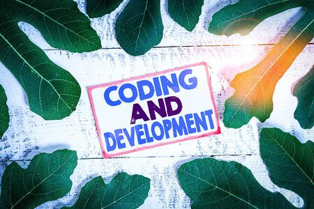 Text sign showing Coding And Development. Business photo text Programming Building simple assembly Programs