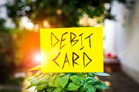 Handwriting text writing Debit Card. Conceptual photo card that deducts money directly from a demonstrating s is checking account Plain empty paper attached to a stick and placed in the green leafy plants Stock fotó