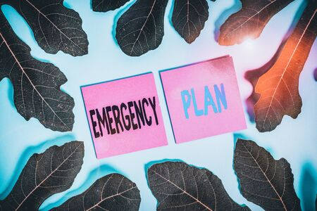 Text sign showing Emergency Plan. Business photo text procedures for handling sudden or unexpected situations Leaves surrounding notepaper above an empty soft pastel table as background