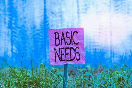 Conceptual hand writing showing Basic Needs. Concept meaning something that you must have in order to sustain or live life Plain paper attached to stick and placed in the grassy land