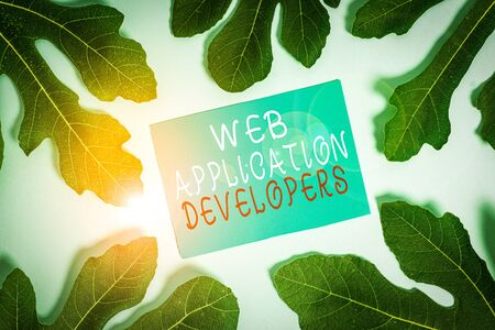 Word writing text Web Application Developers. Business photo showcasing Internet programming experts Technology software