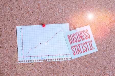 Text sign showing Business Statistic. Business photo showcasing science of accurate and very quick decision makings Corkboard color size paper pin thumbtack tack sheet billboard notice board