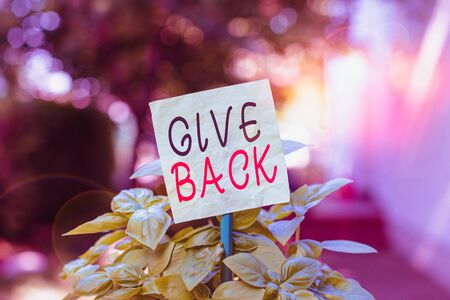 Text sign showing Give Back. Business photo text the act of giving someone something that they owned or had before Plain empty paper attached to a stick and placed in the green leafy plants