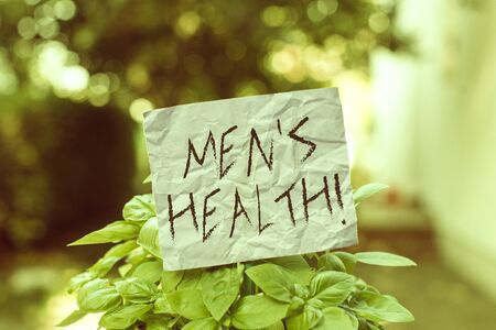 Text sign showing Men S Health. Business photo showcasing state of complete physical mental and social well being by analysis Plain empty paper attached to a stick and placed in the green leafy plants