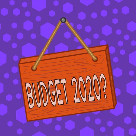 Writing note showing Budget 2020 Question. Business concept for estimate of income and expenditure for next year Square rectangle unreal cartoon wood on the coloured wall
