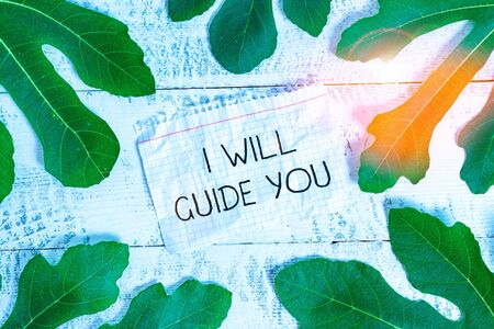 Writing note showing I Will Guide You. Business concept for Help showing a route Influence to do or think something Leaves surrounding notepaper above a classic wooden table