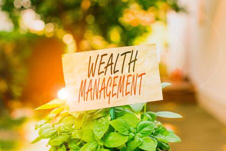 Word writing text Wealth Management. Business photo showcasing perforanalysisce tracking of the funds as per regular market Plain empty paper attached to a stick and placed in the green leafy plants
