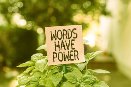 Text sign showing Words Have Power. Business photo showcasing Energy Ability to heal help hinder humble and humiliate Plain empty paper attached to a stick and placed in the green leafy plants