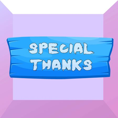 Conceptual hand writing showing Special Thanks. Concept meaning expression of appreciation or gratitude or an acknowledgment Wooden board rectangle shaped wood attached color background
