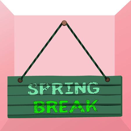 Conceptual hand writing showing Spring Break. Concept meaning week s is vacation for students in the spring typically at Easter Wood plank nail pin colorful background wooden panel fixed 版權商用圖片