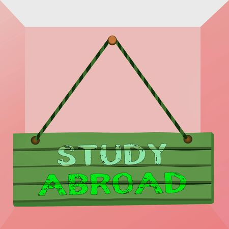 Conceptual hand writing showing Study Abroad. Concept meaning live in a foreign country and attend a foreign university Wood plank nail pin colorful background wooden panel fixed