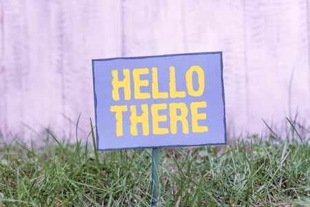 Conceptual hand writing showing Hello There. Concept meaning a way to get someone s is attention more strongly upon greeting Plain paper attached to stick and placed in the grassy land