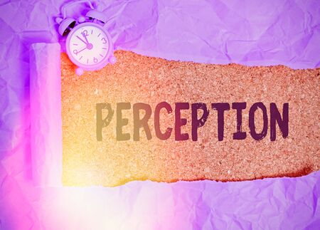 Text sign showing Perception. Business photo text individuals organize and interpret their sensory impressions Reklamní fotografie