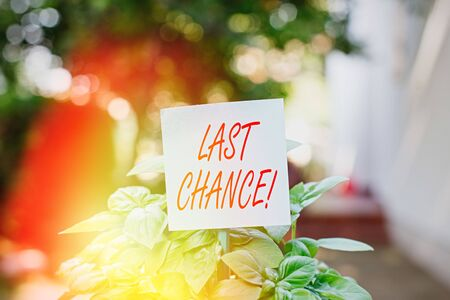 Writing note showing Last Chance. Business concept for final opportunity to achieve or acquire something you want Plain paper attached to stick and placed in the grassy land 版權商用圖片