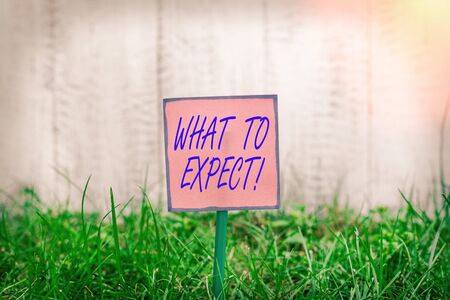 Text sign showing What To Expect. Business photo text asking about regard something as likely to happen occur Plain empty paper attached to a stick and placed in the green grassy land