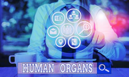 Writing note showing Huanalysis Organs. Business concept for The internal genital structures of the huanalysis body Imagens