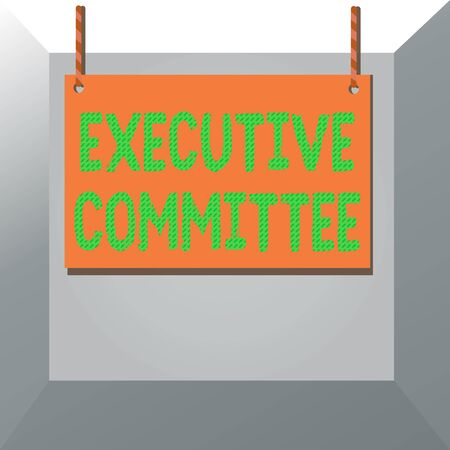 Conceptual hand writing showing Executive Committee. Concept meaning Group of Directors appointed Has Authority in Decisions Wooden board wood empty frame fixed colorful striped string