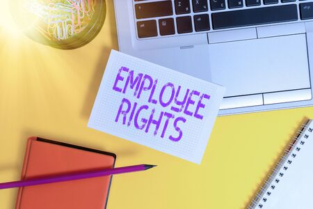 Text sign showing Employee Rights. Business photo showcasing All employees have basic rights in their own workplace Laptop pencil sheet clips container spiral notebook colored background