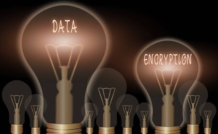 Conceptual hand writing showing Data Encryption. Concept meaning Symmetrickey algorithm for the encrypting electronic data