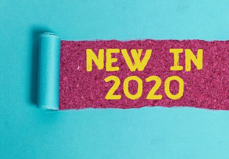 Conceptual hand writing showing New In 2020. Concept meaning what will be expecting or new creation for the year 2020