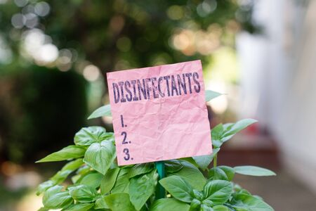 Conceptual hand writing showing Disinfectants. Concept meaning chemical that destroy vegetative form of harmful microorganism Plain paper attached to stick and placed in the grassy land