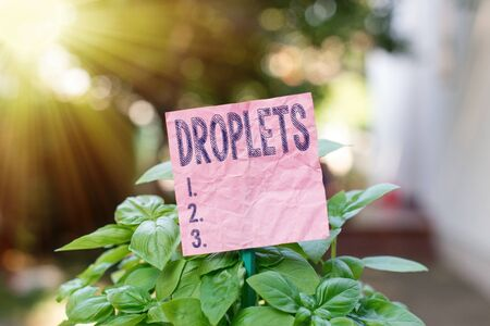 Conceptual hand writing showing Droplets. Concept meaning very small drop of a liquid can be found in certain wet places Plain paper attached to stick and placed in the grassy land