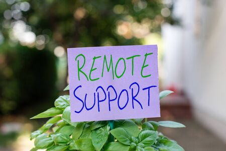 Handwriting text Remote Support. Conceptual photo type of secure service, which permits representatives to help Plain empty paper attached to a stick and placed in the green leafy plants
