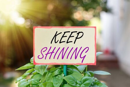 Text sign showing Keep Shining. Business photo text being a good demonstrating excelling on a chosen endeavor or career Plain empty paper attached to a stick and placed in the green leafy plants Foto de archivo