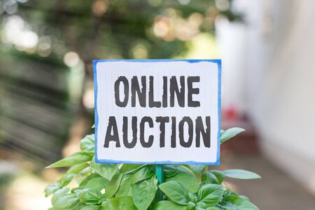 Writing note showing Online Auction. Business concept for digitized sale event which item is sold to the highest bidder Plain paper attached to stick and placed in the grassy land