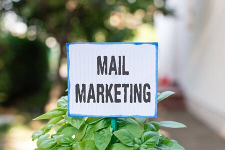 Writing note showing Mail Marketing. Business concept for sending a commercial message to build a relationship with a buyer Plain paper attached to stick and placed in the grassy land