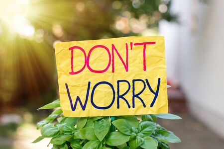 Word writing text Do not dont Worry. Business photo showcasing indicates to be less nervous and have no fear about something Plain empty paper attached to a stick and placed in the green leafy plants