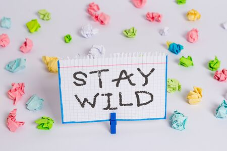 Word writing text Stay Wild. Business photo showcasing end up being extremely energetic throughout the entire day Colored crumpled papers empty reminder white floor background clothespin 免版税图像
