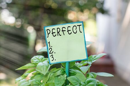 Conceptual hand writing showing Perfect. Concept meaning complete without defects or blemishes precisely accurate or exact Plain paper attached to stick and placed in the grassy land