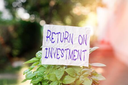 Conceptual hand writing showing Return On Investment. Concept meaning reviewing a financial report or investment risk analysis Plain paper attached to stick and placed in the grassy land