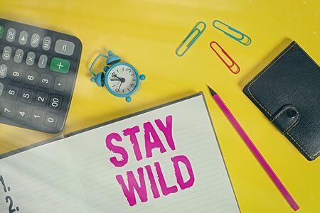 Handwriting text Stay Wild. Conceptual photo end up being extremely energetic throughout the entire day Open notebook wallet calculator clips pencil alarm clock color background