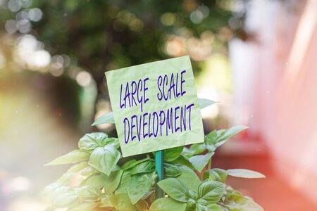 Text sign showing Large Scale Development. Business photo text very wide and modern developed construction site Plain empty paper attached to a stick and placed in the green leafy plants 스톡 콘텐츠