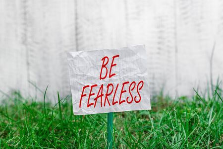 Conceptual hand writing showing Be Fearless. Concept meaning act of striving to lead an extraordinary life and make a difference Plain paper attached to stick and placed in the grassy land Banque d'images