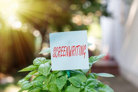 Writing note showing Screenwriting. Business concept for the art and craft of writing scripts for media communication Plain paper attached to stick and placed in the grassy land