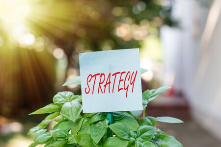 Writing note showing Strategy. Business concept for action plan or strategy designed to achieve an overall goal Plain paper attached to stick and placed in the grassy land Foto de archivo