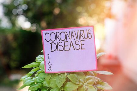 Conceptual hand writing showing Coronavirus Disease. Concept meaning defined as illness caused by a novel virus SARSCoV2 Plain paper attached to stick and placed in the grassy land