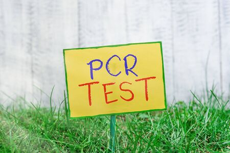 Handwriting text writing Pcr Test. Conceptual photo qualitative detection of viral genome within the short seqeunce of DNA Plain empty paper attached to a stick and placed in the green grassy land