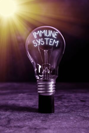 Text sign showing Immune System. Business photo text Complex network work together to defend against germs Realistic colored vintage light bulbs, idea sign solution thinking concept