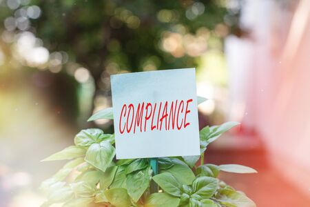 Writing note showing Compliance. Business concept for the action or fact of complying with a wish or commands Plain paper attached to stick and placed in the grassy land
