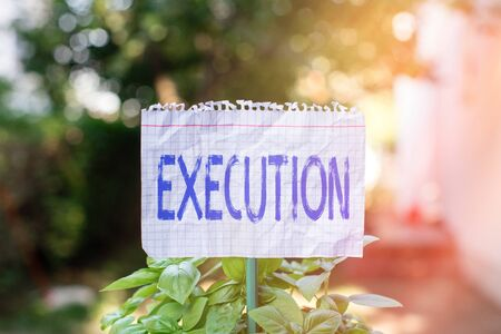 Handwriting text Execution. Conceptual photo it executes or imposes a program order or course of action Plain empty paper attached to a stick and placed in the green leafy plants