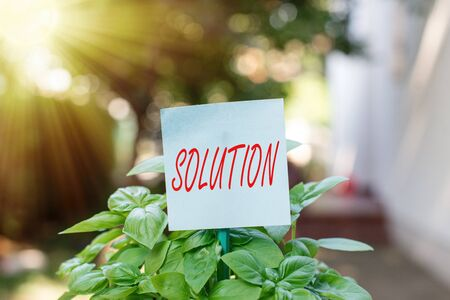 Writing note showing Solution. Business concept for the ways to solve a problem or tackle a difficult situation Plain paper attached to stick and placed in the grassy land 版權商用圖片