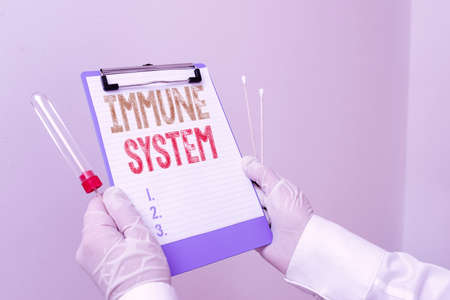 Text sign showing Immune System. Business photo showcasing Complex network work together to defend against germs Laboratory blood test sample shown for medical diagnostic analysis result