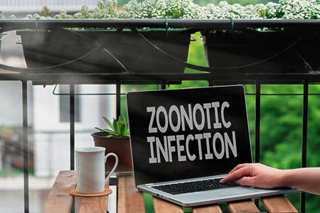 Handwriting text writing Zoonotic Infection. Conceptual photo communicable disease transmitted by a non viral agent Personal workplace overview with laptop device used for individual interest Stok Fotoğraf